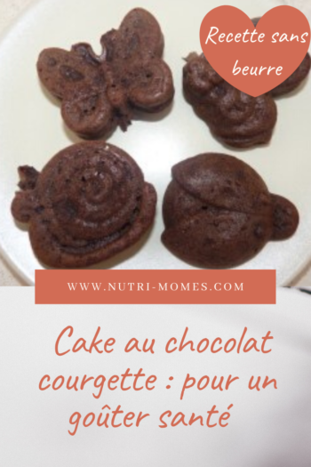 cake chocolat courgette recette pour collation